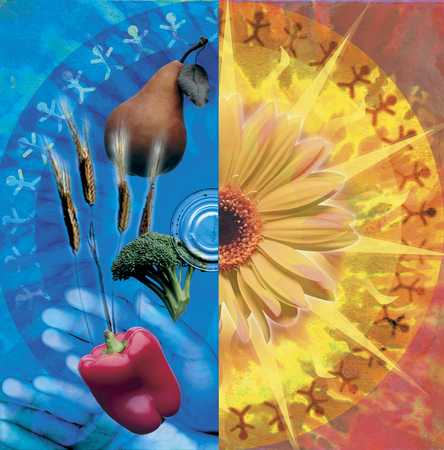 Flower, food, hands and circle of people