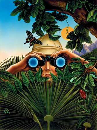 Explorer In Jungle With Binoculars