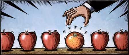 Choosing Orange From Apples