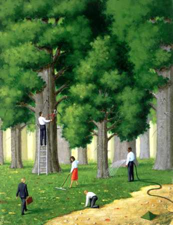 People Caring For Trees