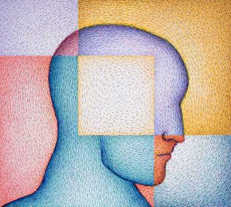 Head Divided Into Colored Squares