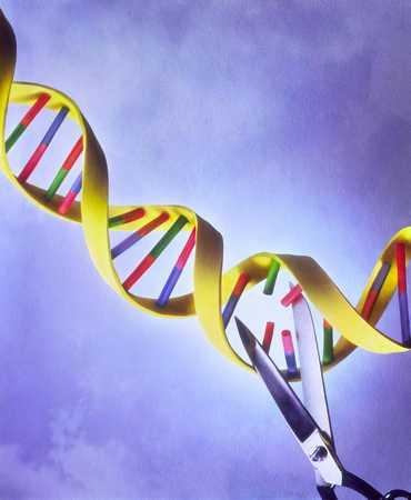 Scissors Cutting A DNA Strand
