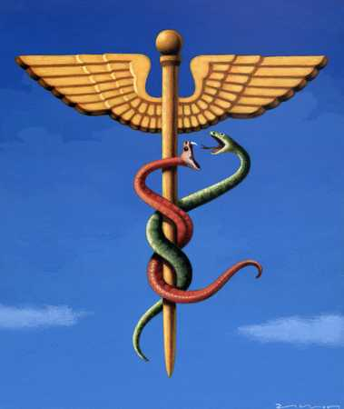 Hippocratic Snakes Fighting