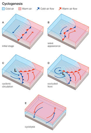The stages in the evolution of a wave (frontal) cyclone.