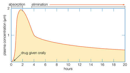 Typical course of changes in the plasma concentration of a drug over time after oral administration.
