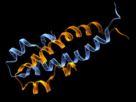 Bacterial chromatin-structuring (DNA-binding) protein