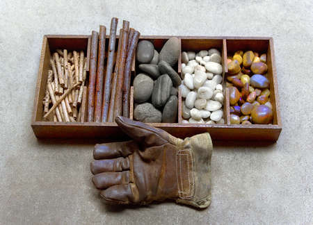 work glove next to collection of natural objects