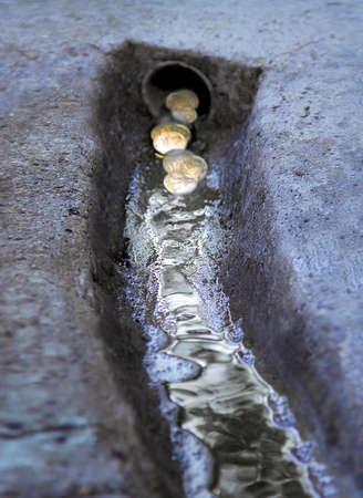 money washing into drain