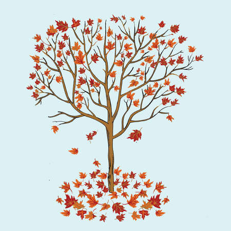 Tree dropping leaves in autumn