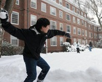 Quincy snowball fight