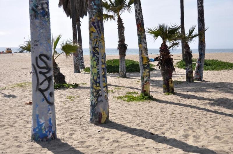 Graffiti Trees