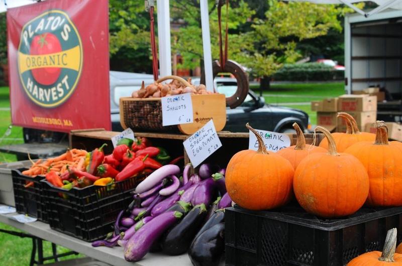 Plato's Organic Harvest