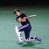 Harvard Club Cricket
