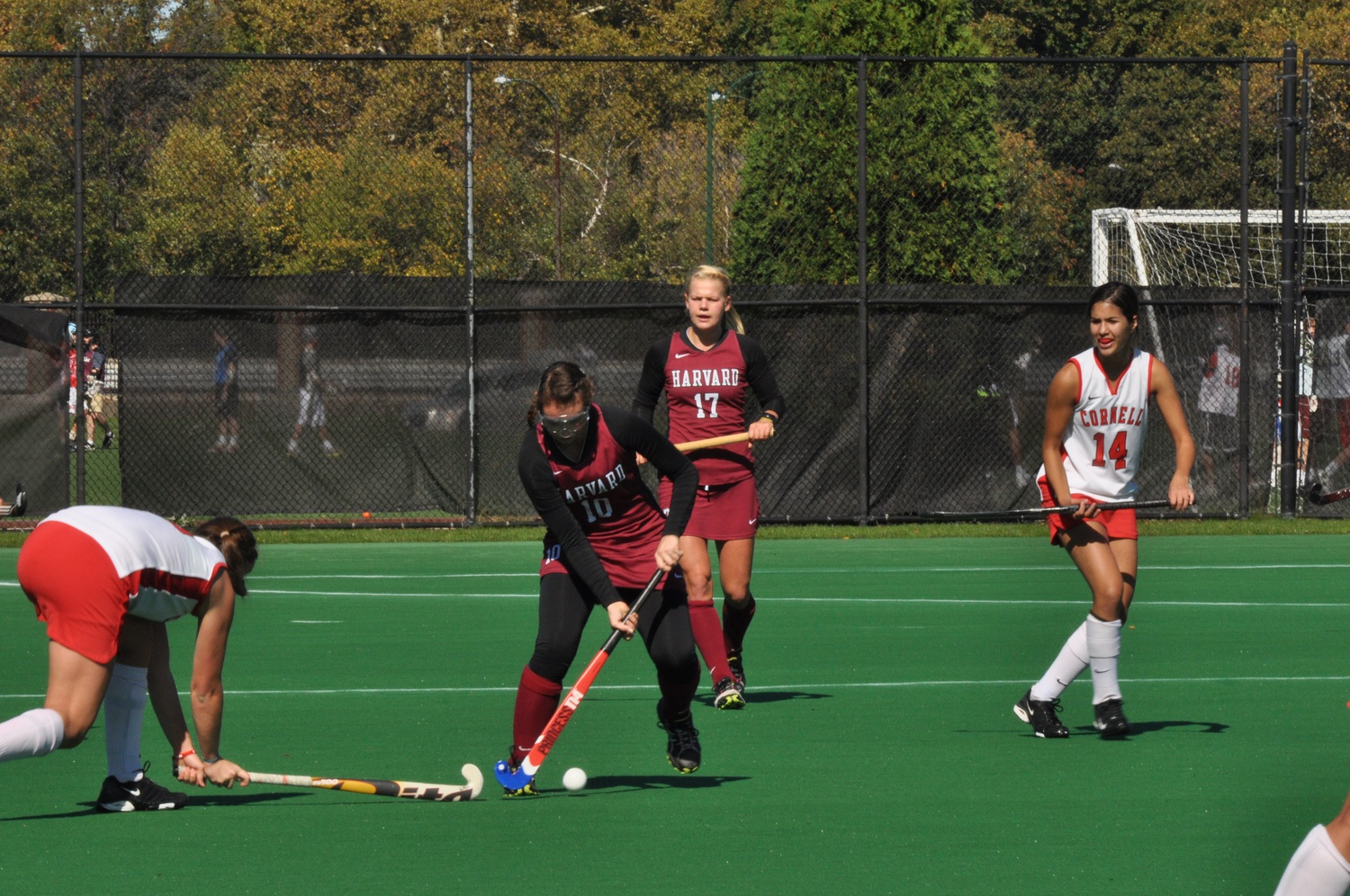 Sophomore Elizabeth Jacobson scored both of the Harvard field hockey team's goals to end the squad's season on a high note.