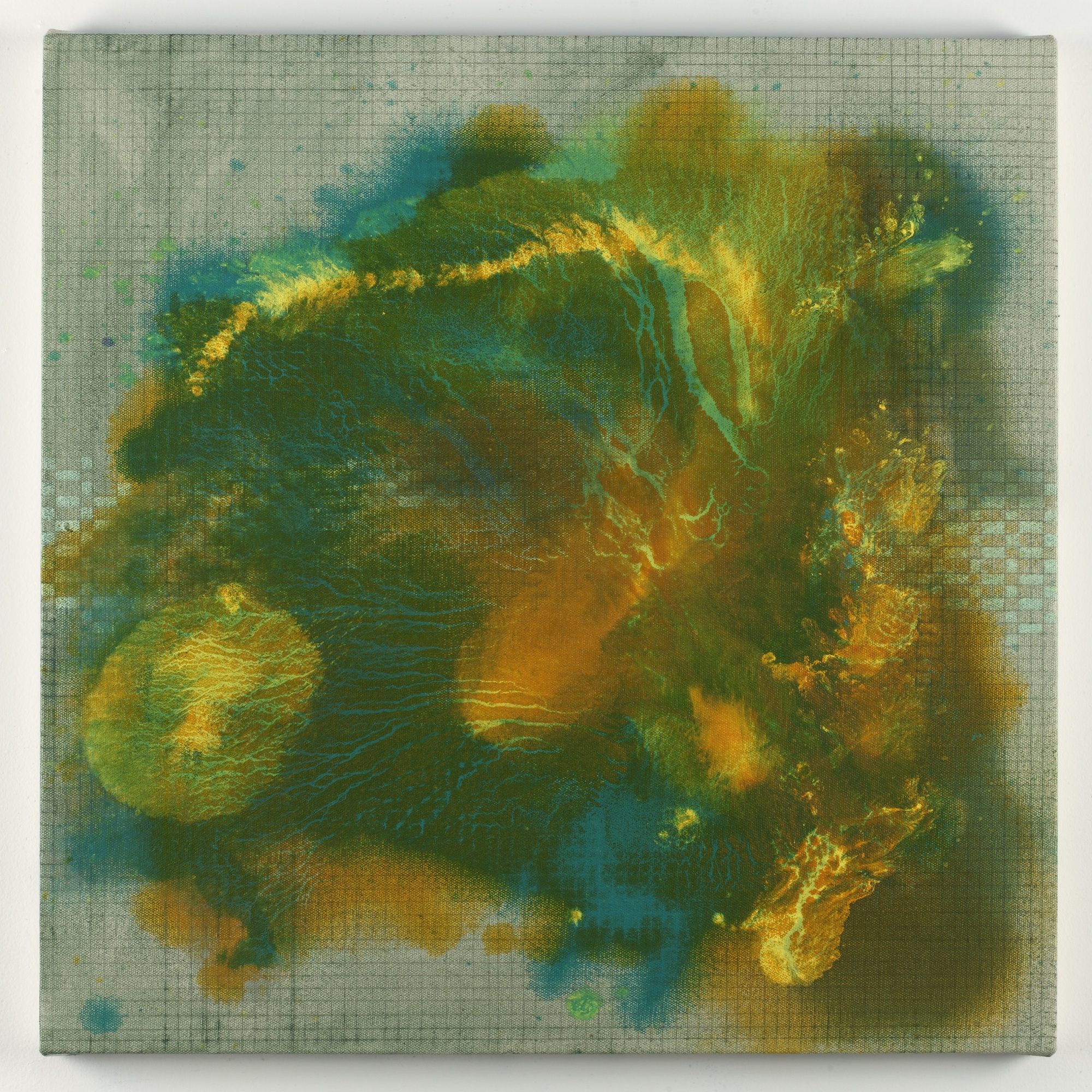 Elise Adibi's paintings are made with plant oils and other natural ingredients to add smell to the artwork.