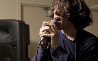 Schwalbe Sings