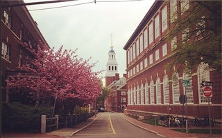 Lowell in spring