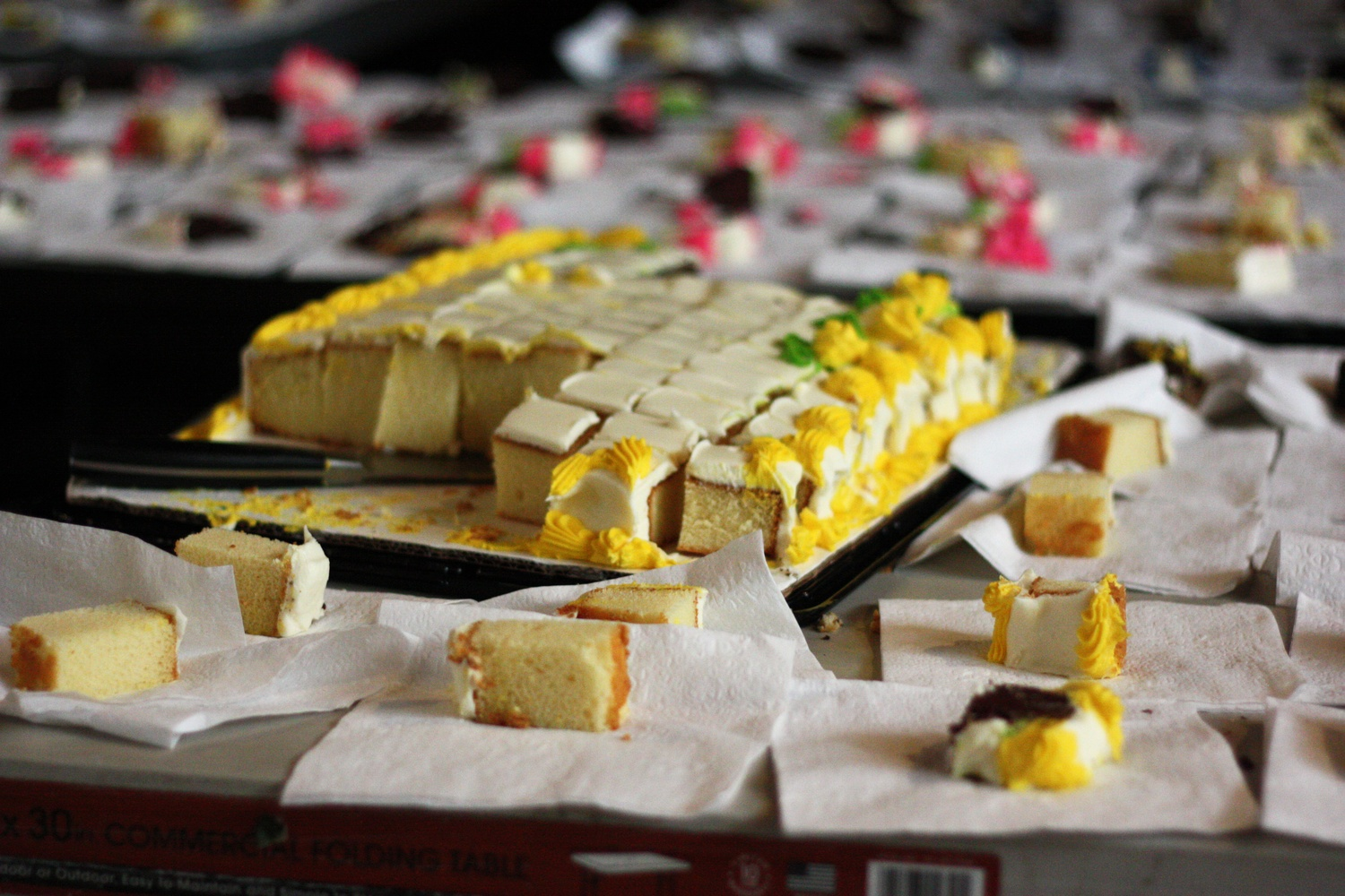 Slices of cake await the rush of students after the first CS50 lecture.