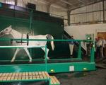 Horse on a treadmill.