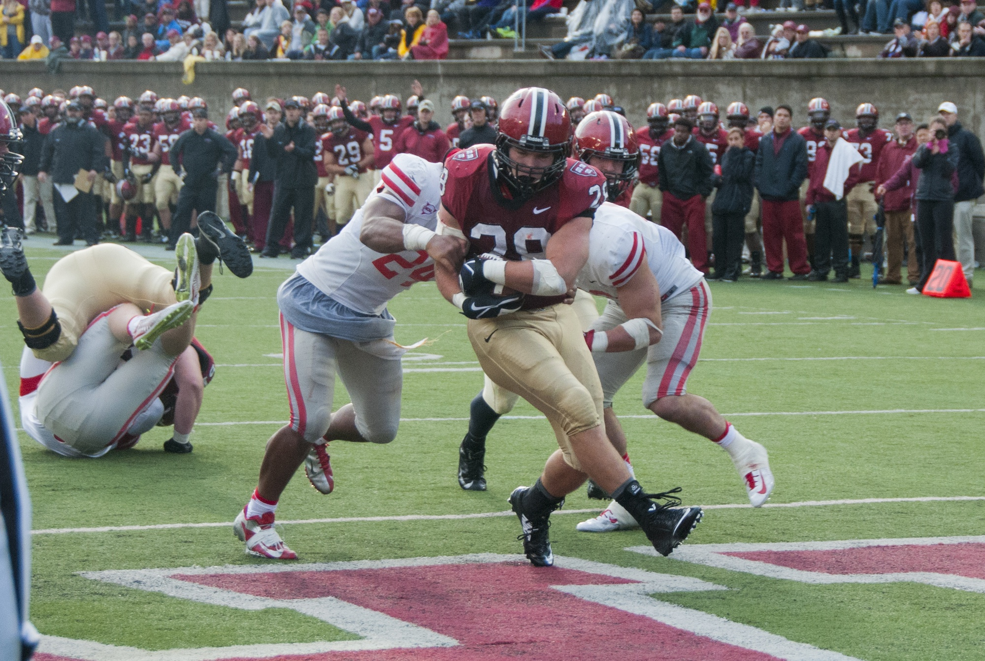 Senior running back Andrew Casten enters the end zone for the game's final touchdown late in the fourth quarter. Harvard rattled off 24 points in the second half to defeat visiting Cornell.