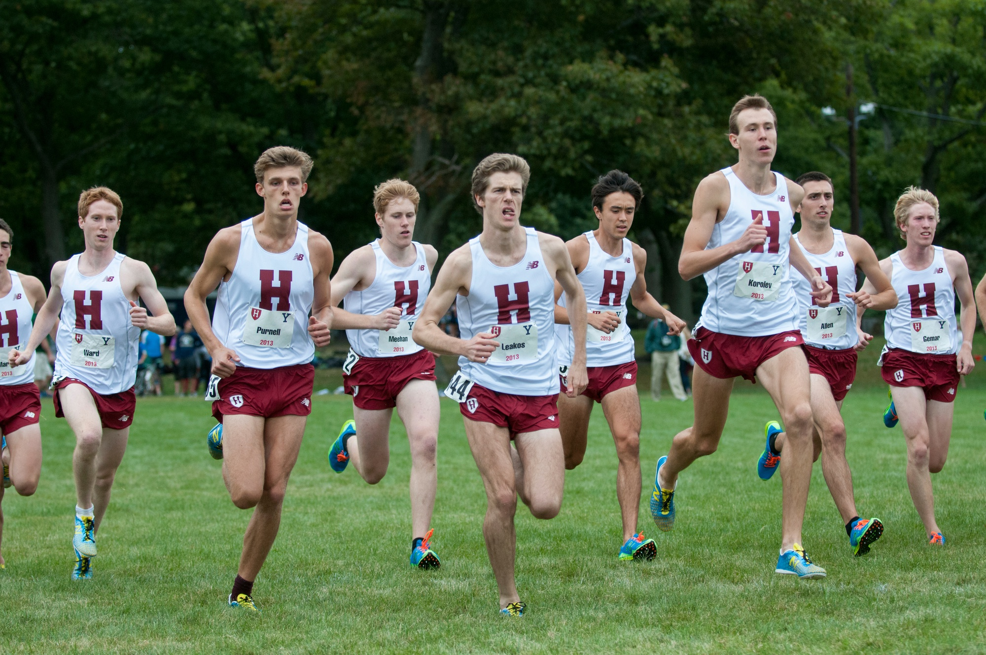 The men's and women's cross country teams competed at the 2014 Ivy League Heptagonal Championships this past weekend, placing fifth and seventh, respectively.