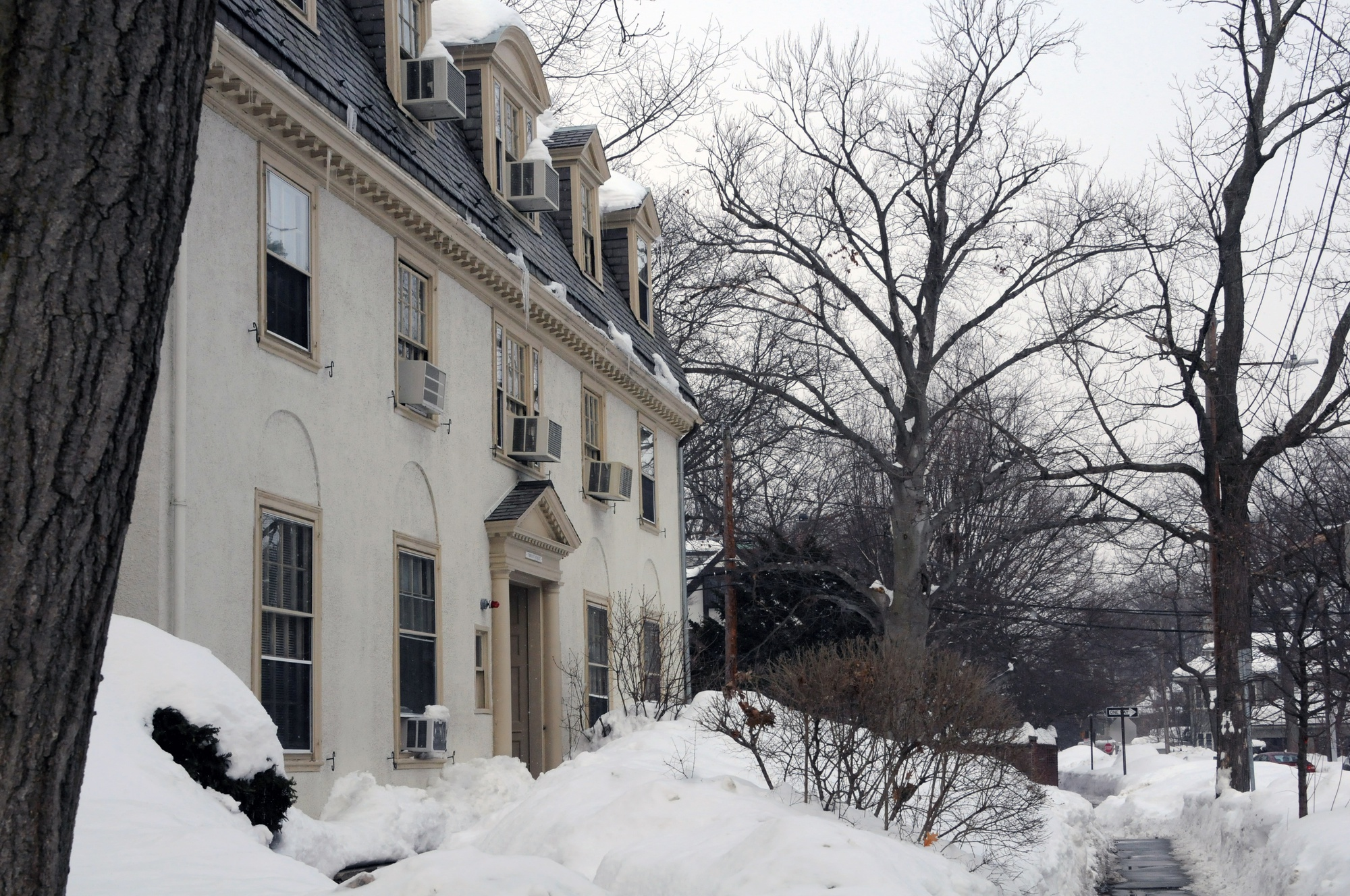 Language offices in the Department of East Asian Languages and Civilizations are housed in a re-purposed residential home at 5 Bryant Street. Department administrators said the space does not have the capacity to accommodate approximately 40 instructors and administrators.