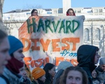 More From Divest