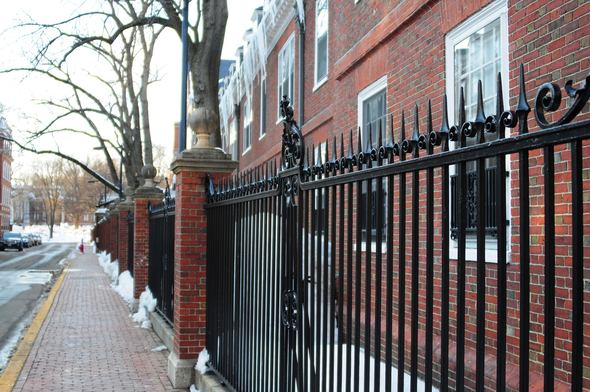 With stricter regulations during River Run, Harvard students sometimes resort to hopping the fences of upperclassmen houses, such as those behind Lowell.