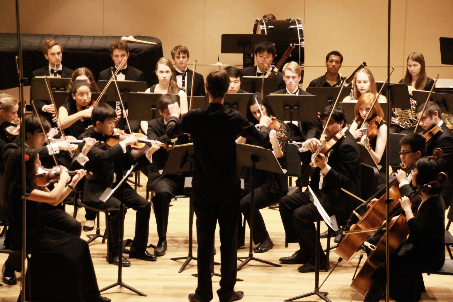 The Bach Society Orchestra begins the spring semester with its third concert of the year.