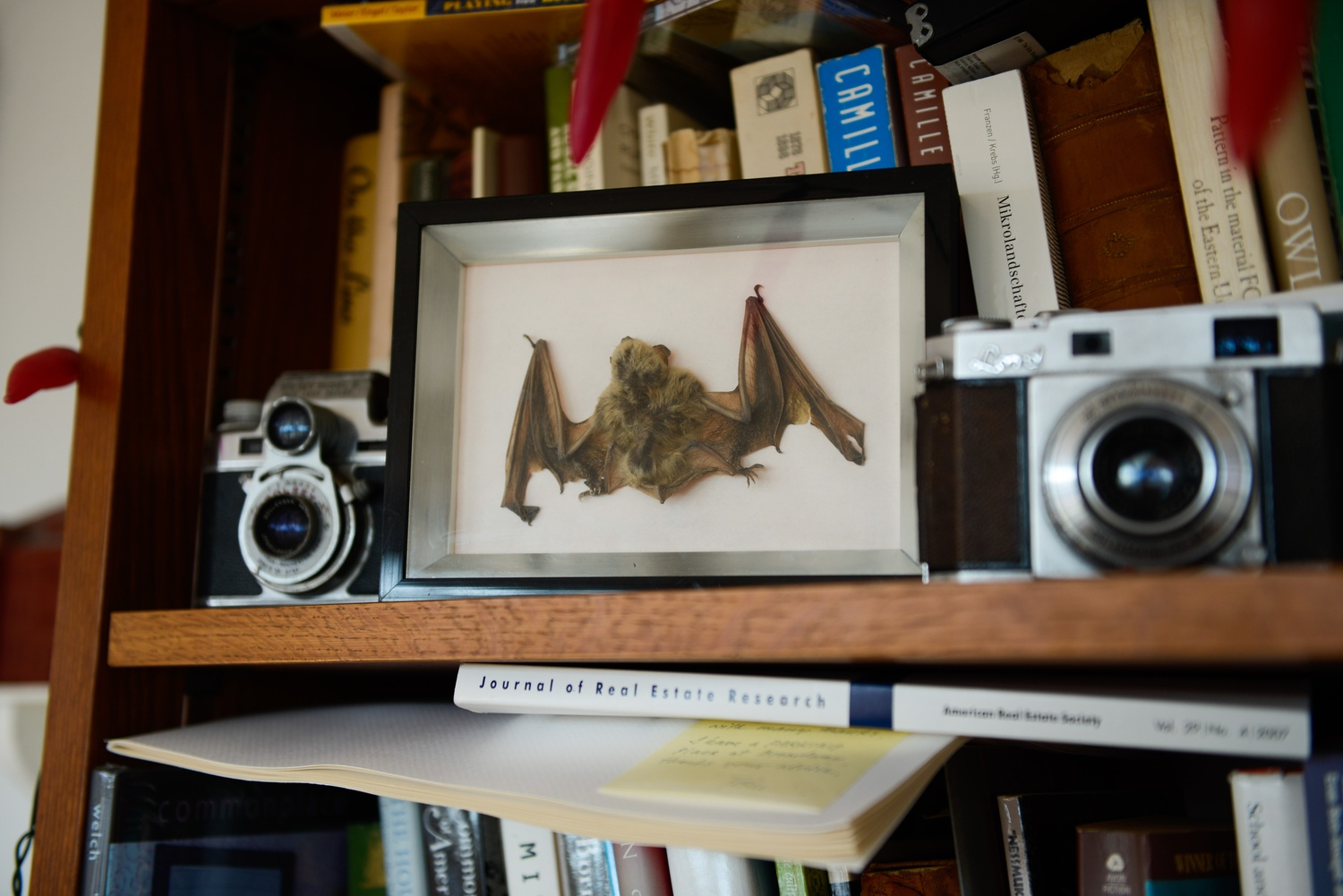 """""""He's got the eye of an interior designer. It's not just this random collection of things that he's thoughtlessly hoarded. Everything is there for a reason,"""" said Sam H. Rashba '14-'15 on Stilgoe's office."""