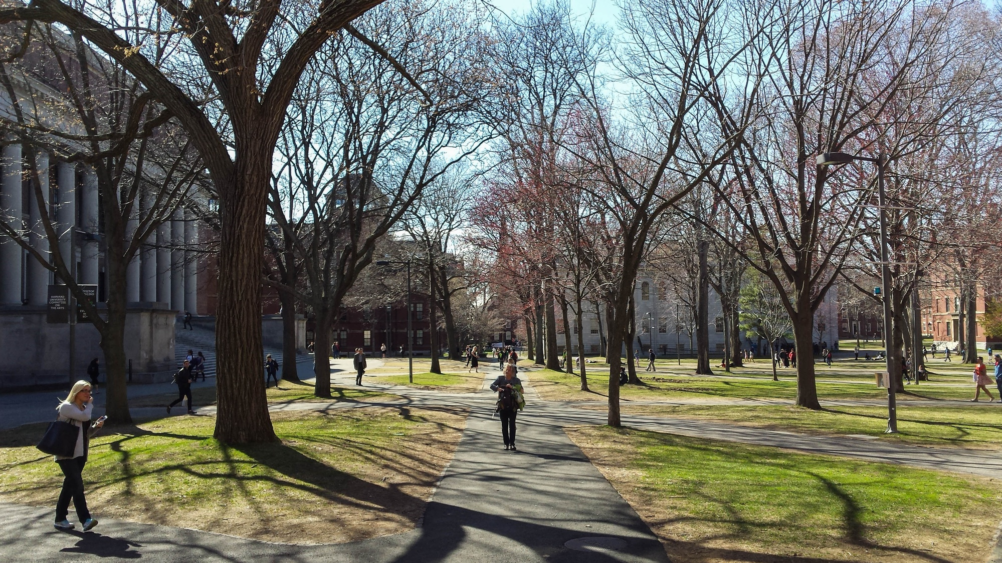 Shadows of trees spread across Tercentenary Theater as students and visitors walk through the yard on a warm Wednesday.
