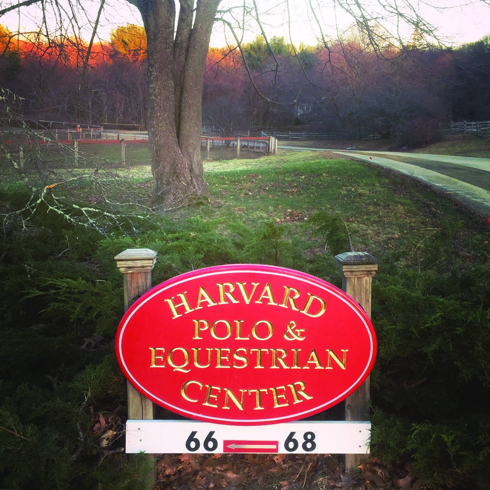 The Harvard Polo Team was the first collegiate program in the country, having been founded in 1883.