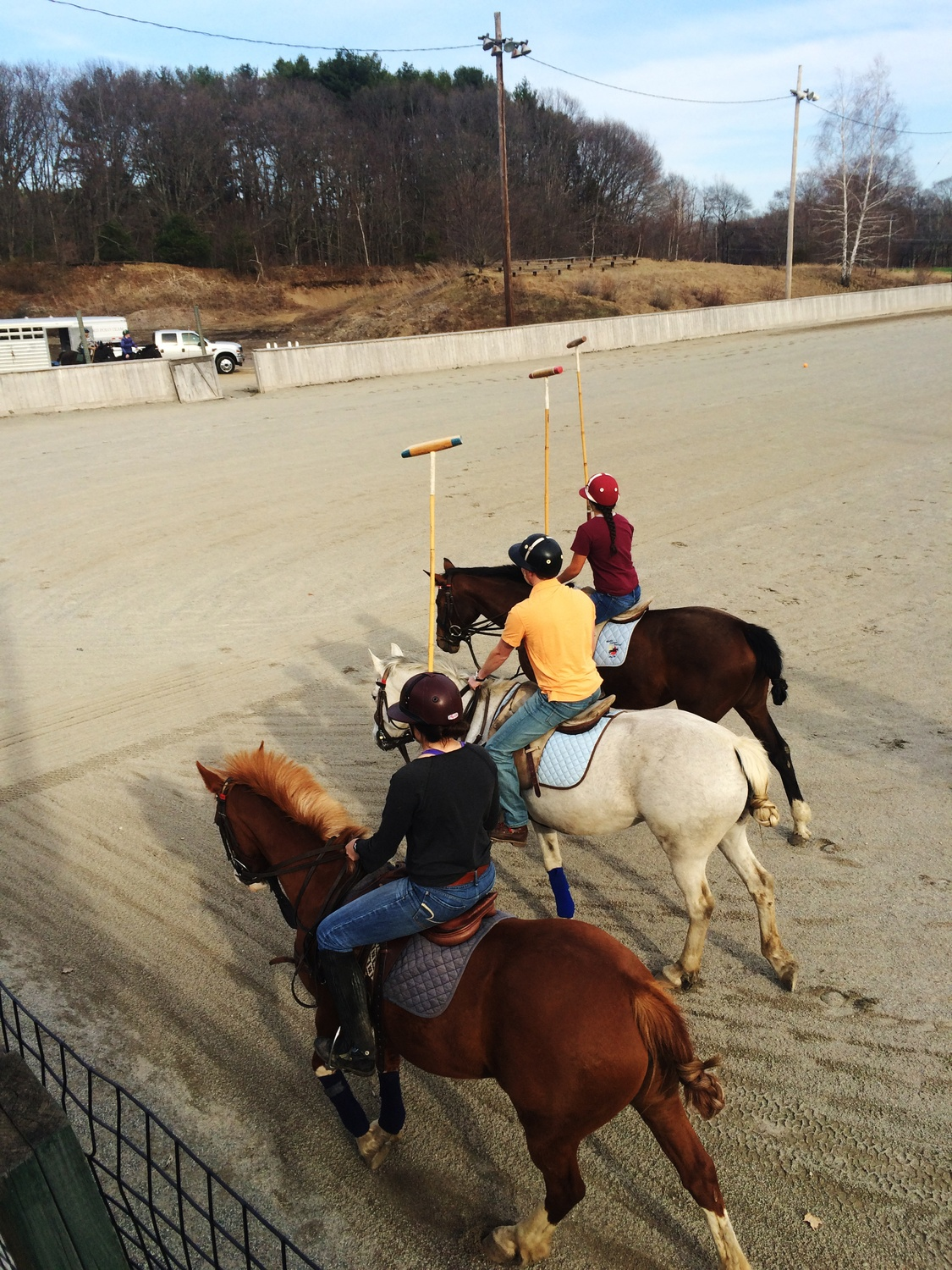 Four days a week, members of the Harvard Polo Team make the trek out to Hamilton, Mass., to practice their sport.