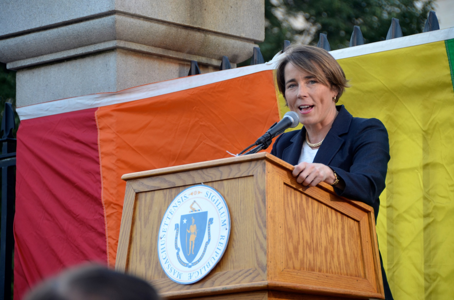 Divestment activists are asking Massachusetts Attorney General Maura T. Healey '92 to launch a formal review into Harvard's investments.