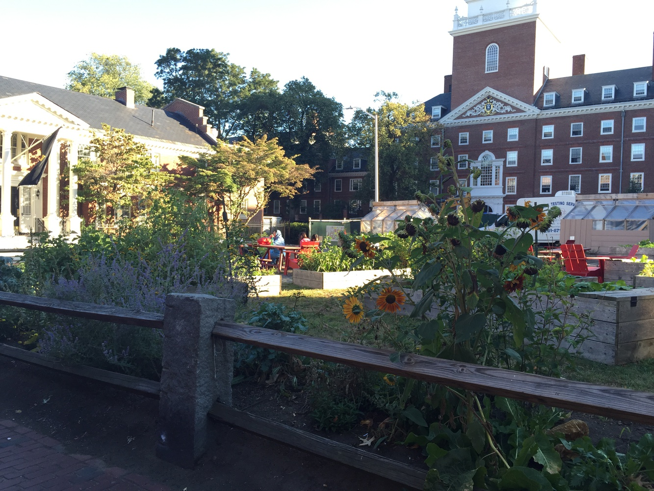 The Community Garden, where Farmal will take place this Saturday.
