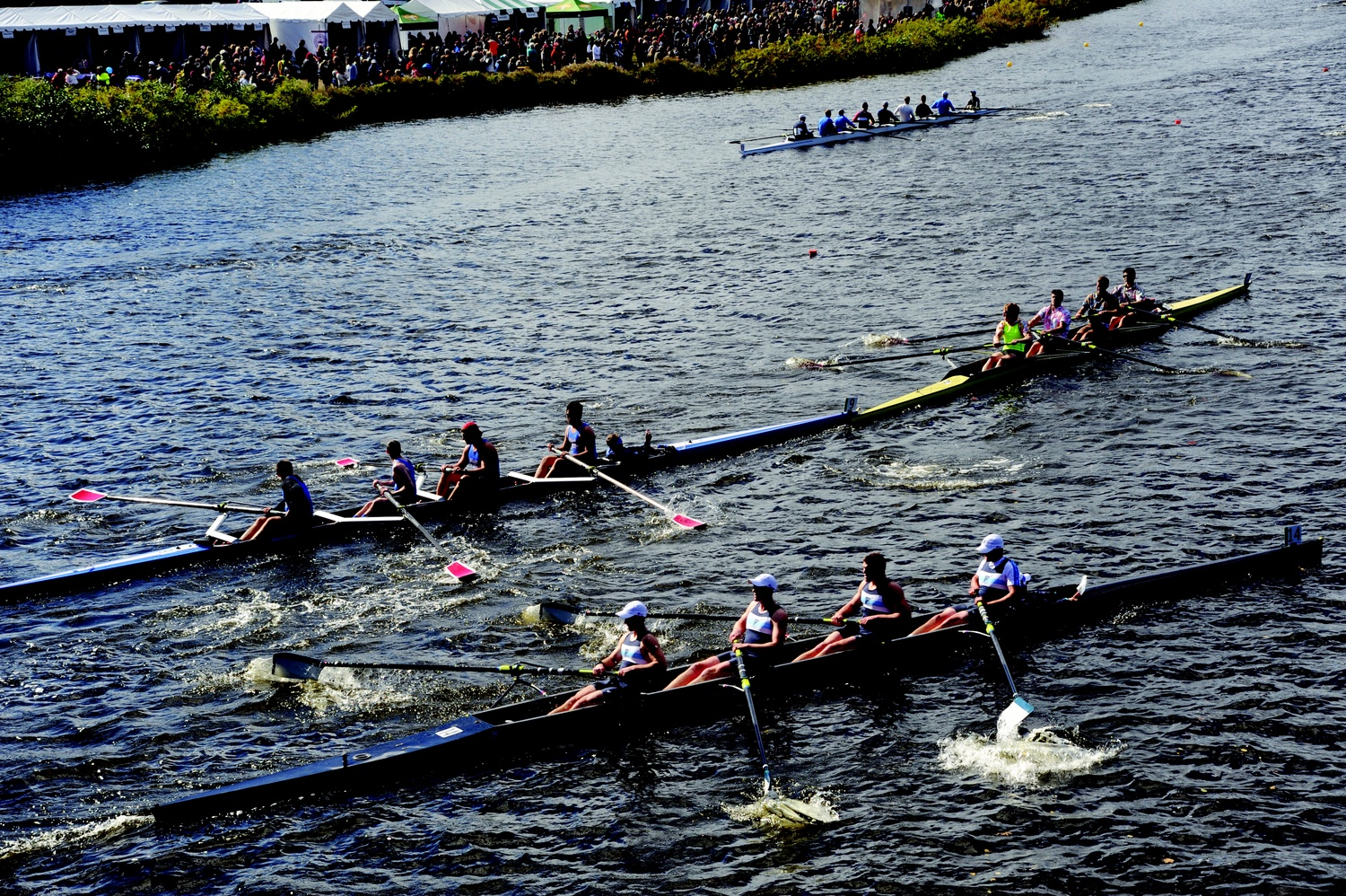 Hundreds of boats from across the country competed in club and collegiate races over the weekend on the Charles River.