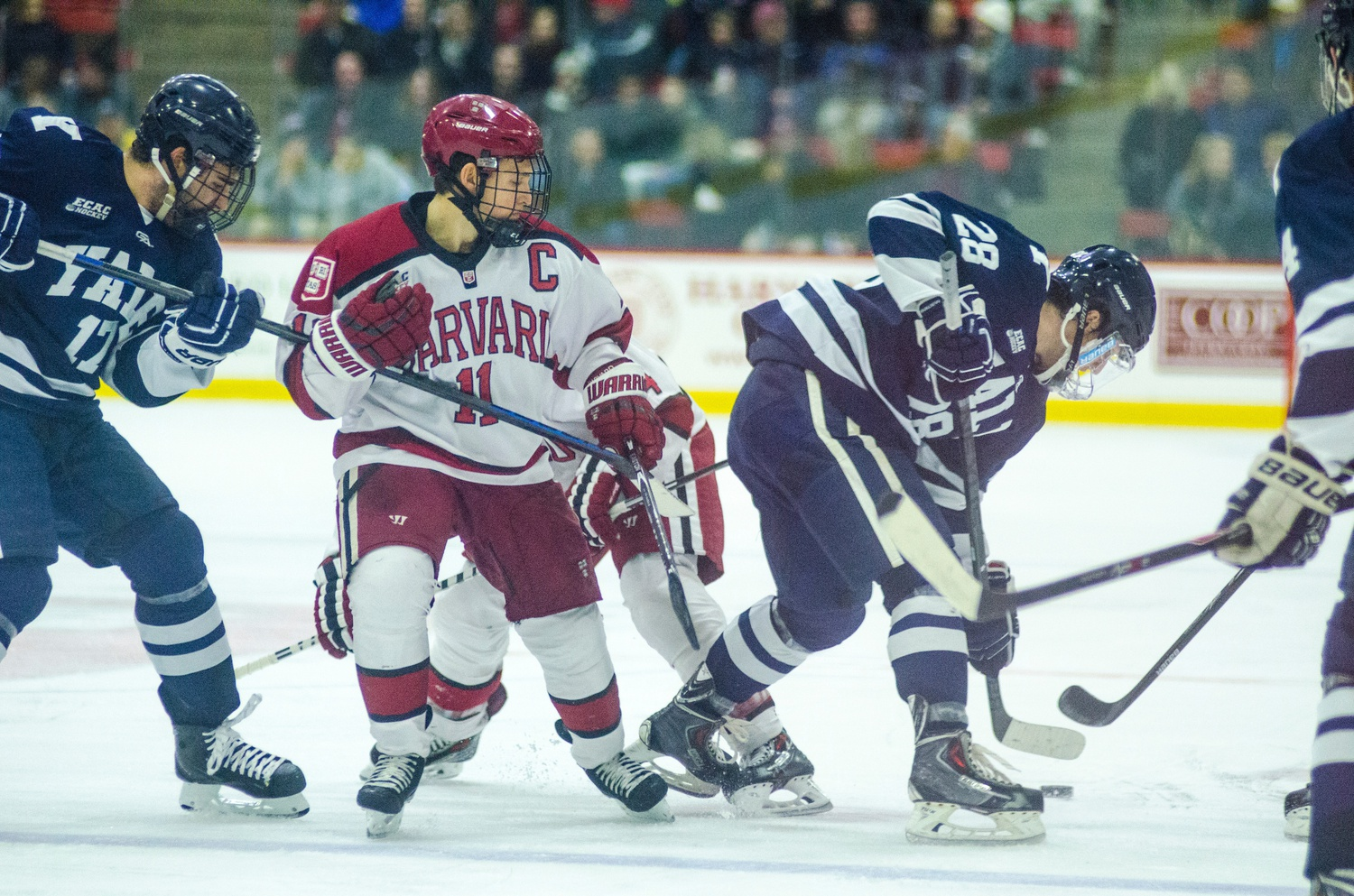 The Harvard and Yale men's hockey teams, shown in action last season, will square off for the first time this year at the Bright-Landry Hockey Center on Friday.
