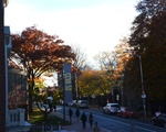 CCVA Fall