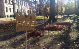 Rake in picture 1