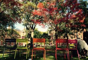 Yard Chairs