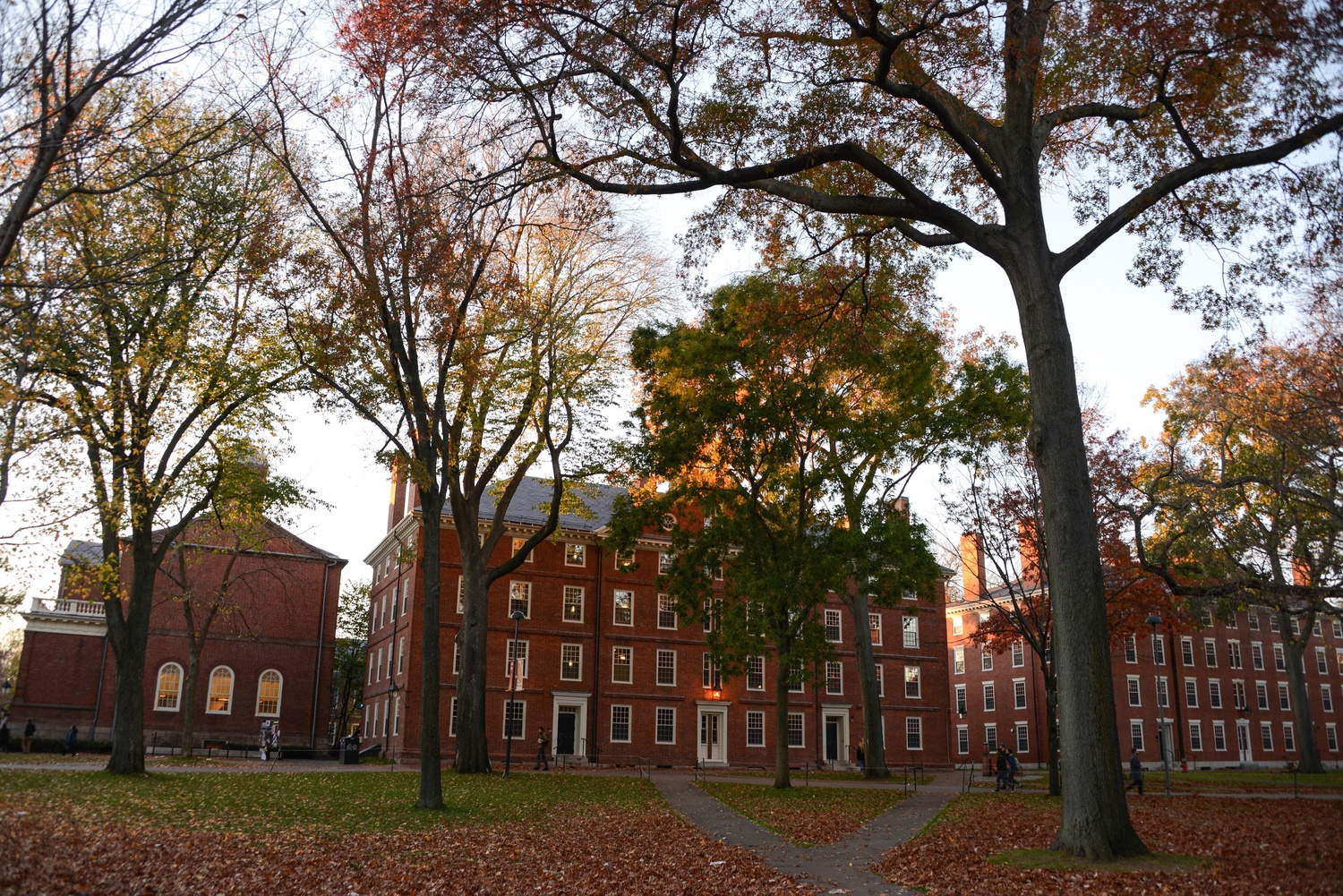 Autumn in Harvard Yard.