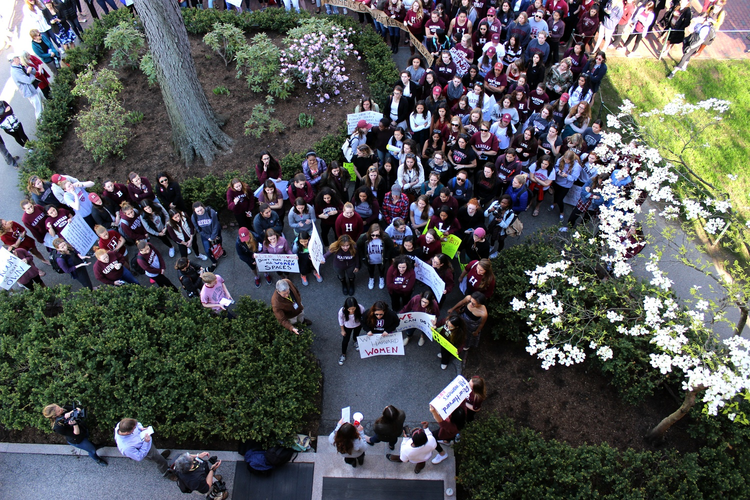 Days after the sanctions' debut in 2016, scores of sorority and female final club members protested outside the president's office. Two years and three months later, every one of Harvard's all-female groups has agreed to go co-ed.