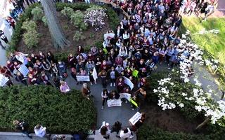 A Gathering Crowd