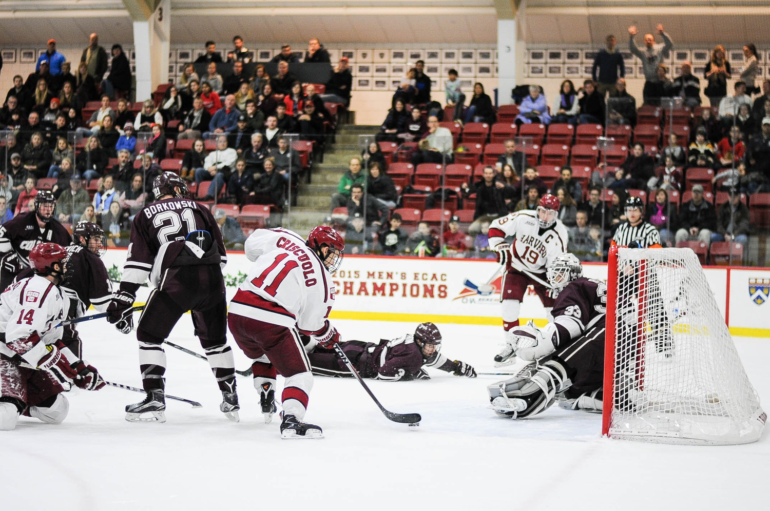 Senior forward Kyle Criscuolo takes a shot on goal with classmate Jimmy Vesey (19) in the background. The co-captains were two of the biggest contributors to the rejuvenated success of the program.