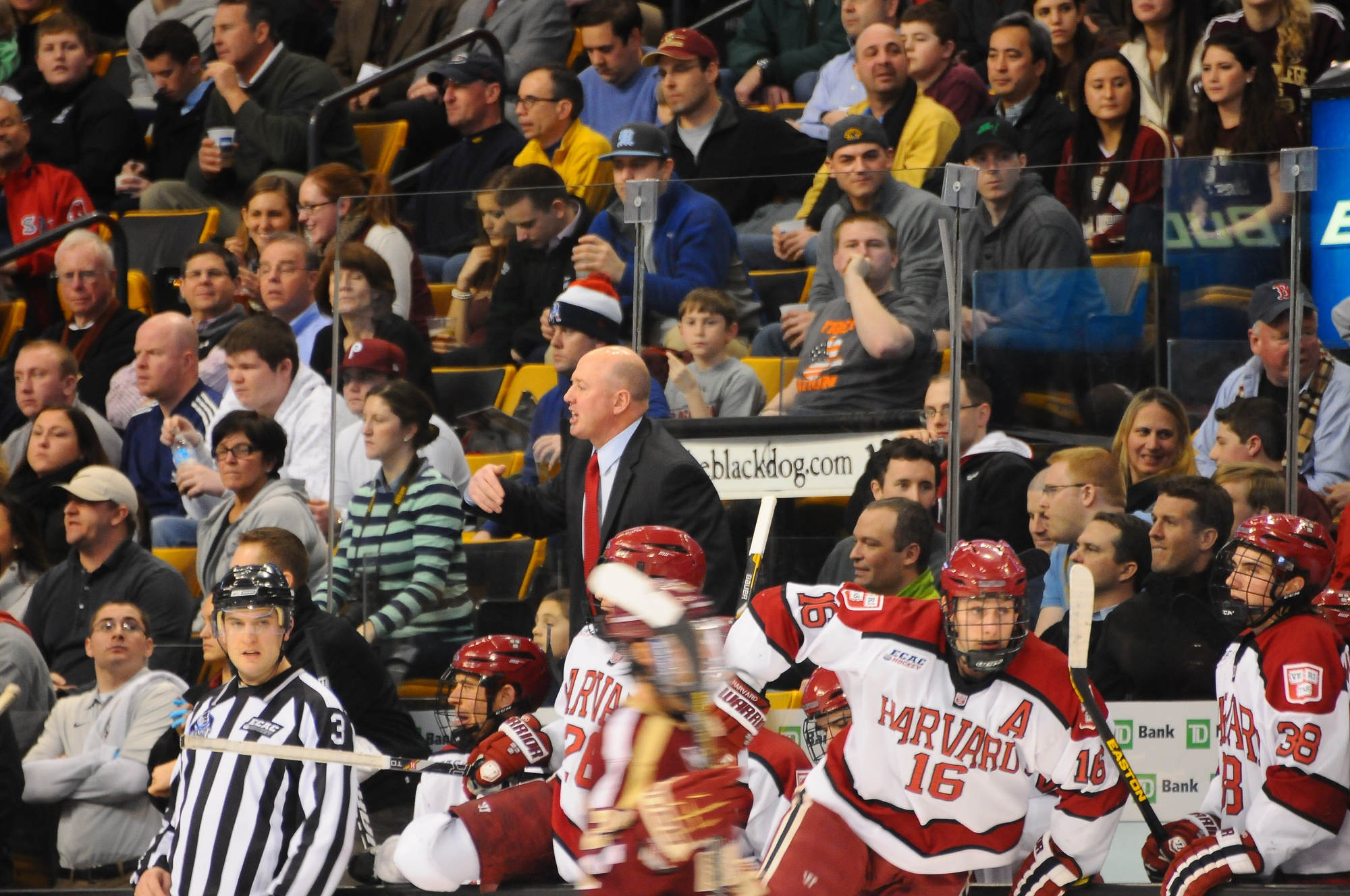 Ted Donato gets animated during a 2013 Beanpot semifinal loss to Boston College.
