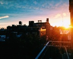 View from the Fire Escape