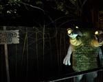 Midnight Zoo Puppet