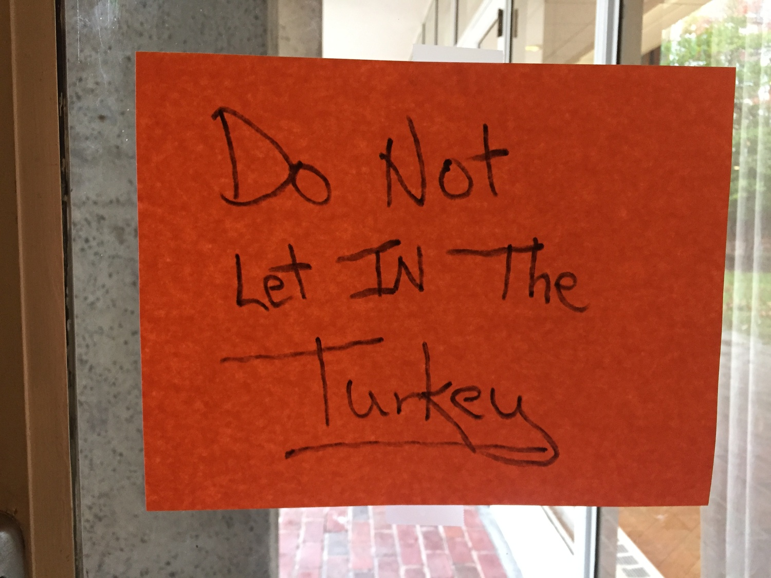 A sign on a door in Currier House imploring students to not let any of the turkeys in.
