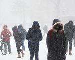 Snowpacalypse