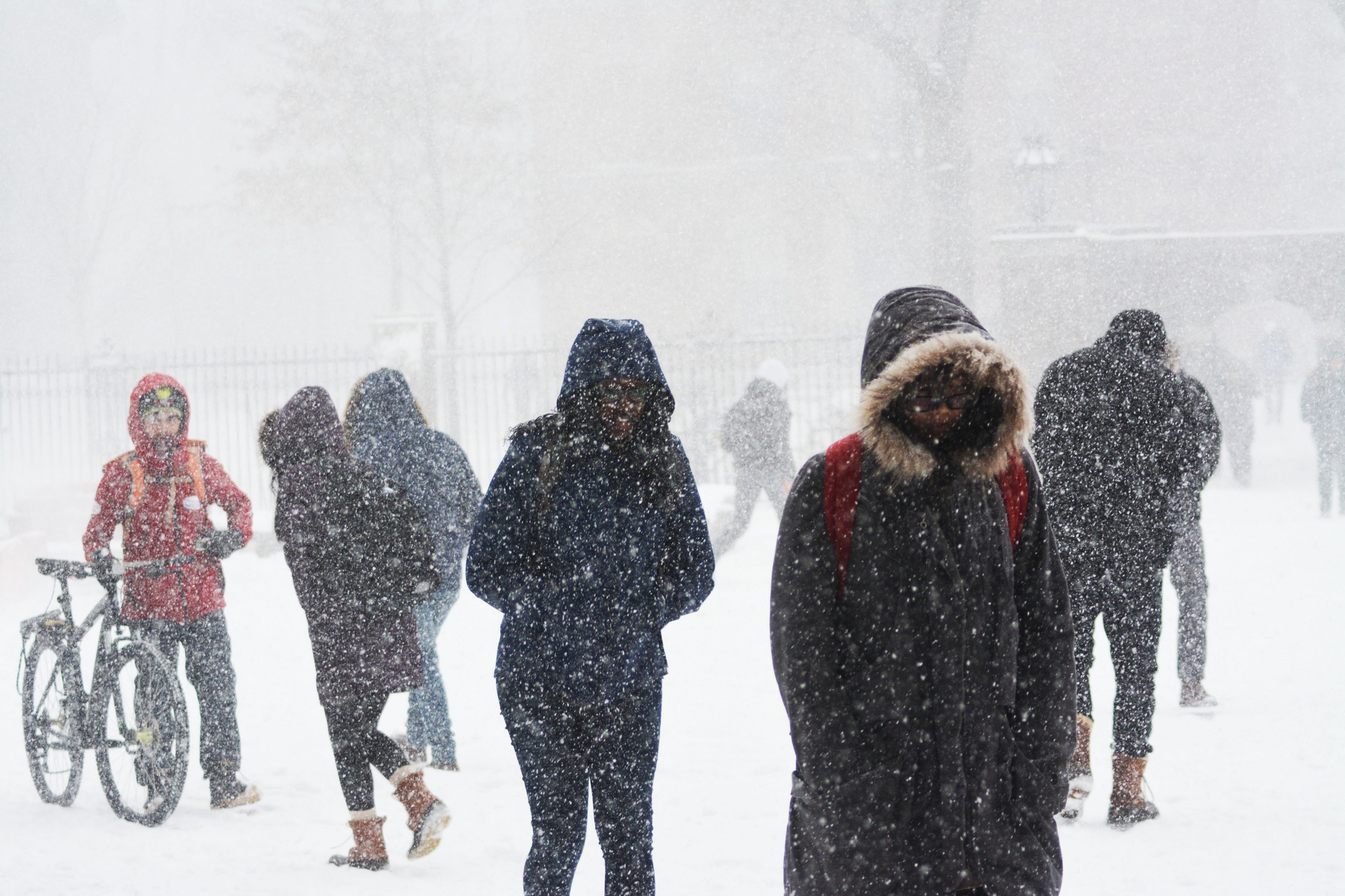 Despite freezing temperatures, gusty winds, and more than a foot of snow, students bundled up and headed to class on Thursday.